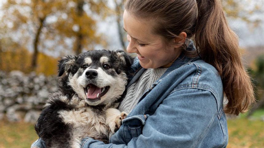 Προληπτική οδοντιατρική για pets