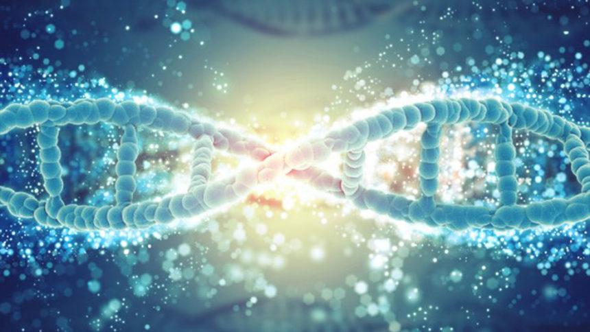 Διερεύνηση της γονιδιακής ποικιλομορφίας