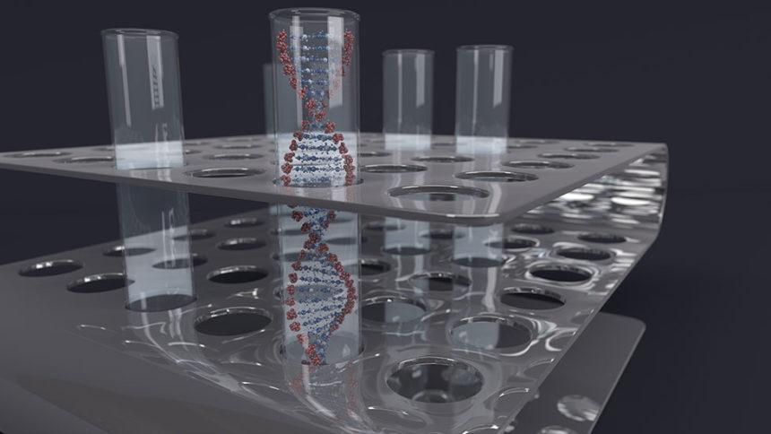 Βλαστοκύτταρα και προσαρμοστικότητα των εμφυτευμάτων